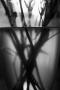 dsc_0151_zwart-wit_1